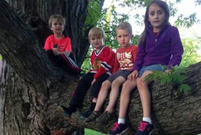 children sitting on large tree branch