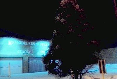 Pine tree on city street at night surrounded by snow